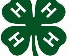0-4HLogo-Hånd-Hoved-Hjerte-Helbred