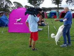 Hundeudstilling-i-Horne-3.-og-4.-august-2019-15