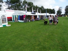Hundeudstilling-i-Horne-3.-og-4.-august-2019-4