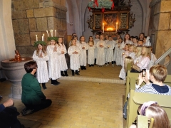 Juletræsfesten i Horne 2018 (3)