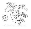Volleybold